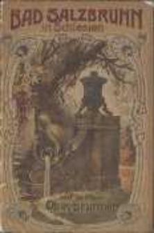 Bad Salzbrunn in Schlesien 1904 : Nachweis über Kur - und Orts-Verhältnisse