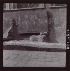 [Jelenia Góra 1958] [Dokument ikonograficzny]