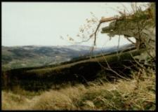 Góry Izerskie (fot.2) [Dokument ikonograficzny]