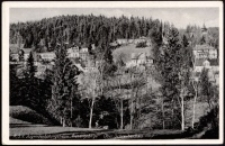 """Szklarska Poręba Górna - widok na budynek schroniska młodzieżowego """"Riesengebirge"""" [Dokument ikonograficzny]"""