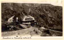 Hampelbaude im Riesengebirge 1258 m ü. M. [Dokument ikonograficzny]