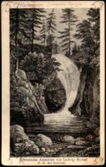 Szklarska Poręba - wodospad Szklarki, wg L. Richtera [Dokument ikonograficzny]