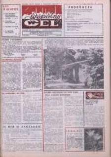 """Wspólny cel : gazeta załogi ZWCH """"Chemitex-Celwiskoza"""", 1988, nr 22 (1067)"""