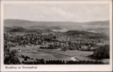 Jelenia Góra - panorama miasta [Dokument ikonograficzny]