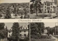 Widokówka Obornik Śląskich, ok. 1970 r. [Dokument ikonograficzny]