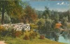 Jelenia Góra - Wzgórze Kościuszki - Kaczy Staw [Dokument ikonograficzny]