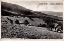 Karkonosze - okolice Krzyżatki [Dokument ikonograficzny]