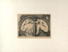 Bliźniaczy embrion [Dokument ikonograficzny]