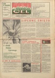 """Wspólny cel : gazeta załogi ZWCH """"Chemitex-Celwiskoza"""", 1986, nr 20 (993)"""