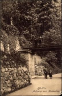 Görlitz. Aufgang zum Neissesteg [Dokument ikonograficzny]