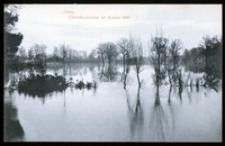 Ohlau - Űberschwemmung des Kleinod 1909 [Dokument ikonograficzny]