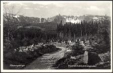 Karkonosze - widok z leśnego szlaku na Śnieżne Kotły ze schroniskiem [Dokument ikonograficzny]
