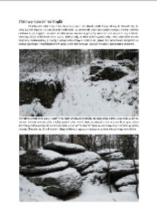 Zimowy spacer na Kopki [Dokument elektroniczny]