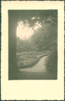 Park [Dokument ikonograficzny]