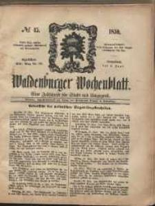 Waldenburger Wochenblatt, Jg. 5, 1859, nr 45