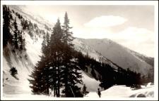 Riesengebirge im Weisswassergrund [Dokument ikonograficzny]