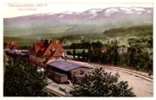 Szklarska Poręba Górna - dworzec kolejowy [Dokument ikonograficzny]