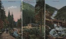 Riesengebirge. 1. Melzergrund, 2. Melzergrundbaude mit Blick a. d. Schneekoppe, 3. Lomnitzfall