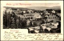 Schreiberhau. Gruss aus dem Riesengebirge. [Dokument ikonograficzny]